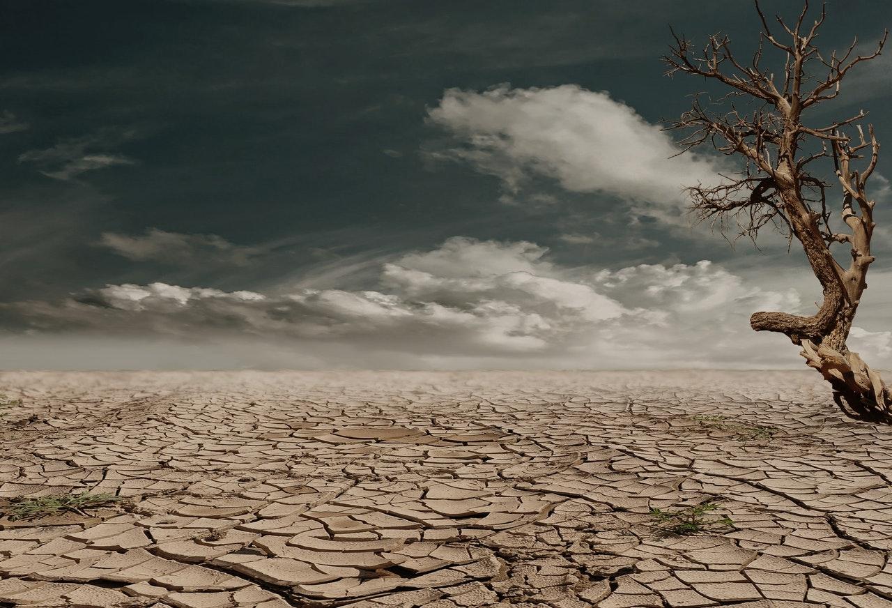 droog klimaat